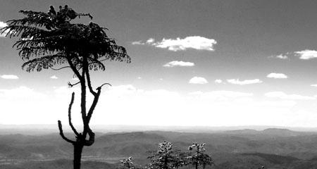 Landschaft_Brasilia