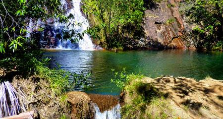 naturalschwimmingpool